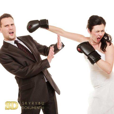 Skyrybos dėl kito sutuoktinio kaltės